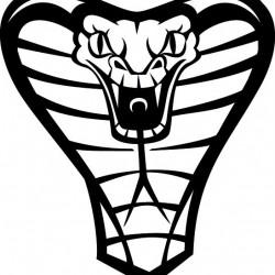 cobra_snake_head