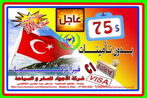 visa75