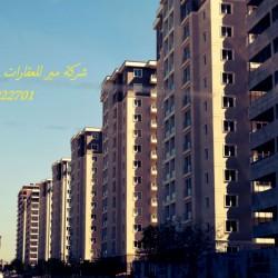 DSC_0018 - Copy