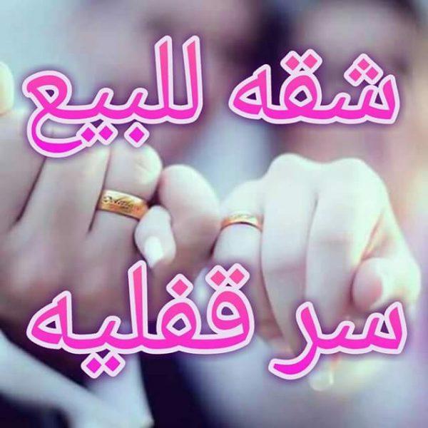 FB_IMG_1496080241319