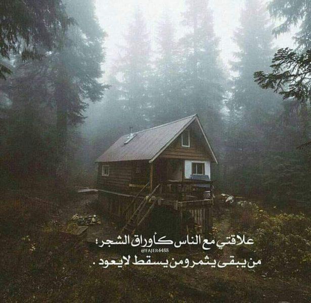 FB_IMG_1485873178324