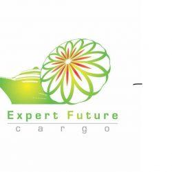 logo_256870