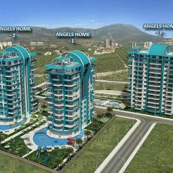 angel homes 4  for sale