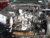 لمعرفة ضرر السيارات الوارد امريكي بالمظبوط - صورة9